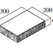B型(*) 16.6個/m²