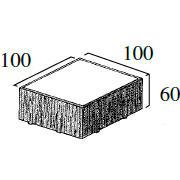 S型 100個/m²